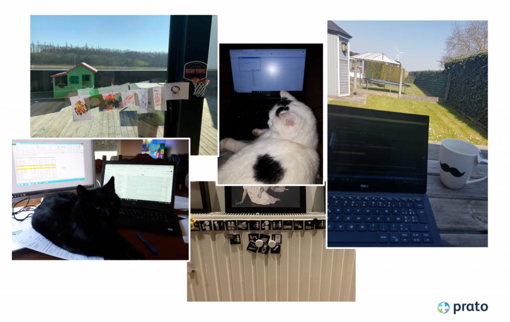 Blog thuiswerken