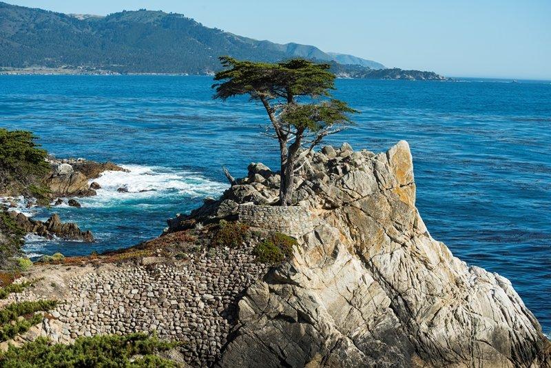 Blog: Cypress